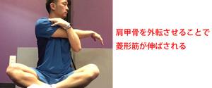 肩甲骨の内側の痛みの原因とは?放っておくと慢性化するかも!すぐに解消しよう!
