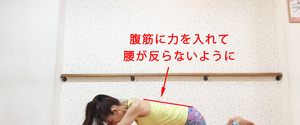 【女性向け】腹筋ローラーの効果とくびれを作るためのポイント!