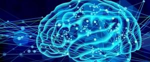 運動と脳との関係!運動が脳に与える影響を解説!