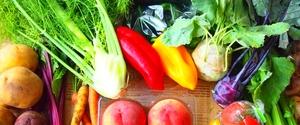 食物繊維はダイエットに活用すべし!その効果とは?