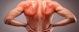 筋膜リリースのやり方と効果について。筋トレやダイエットにメリットがある!