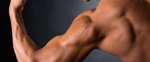 上腕二頭筋の鍛え方とは?プロのトレーナーがどこよりも正しい情報を伝授!