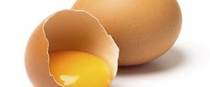 筋トレに卵は最高の味方!摂取タイミングや量とは?