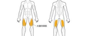 【決定版】大腿四頭筋・ハムストリングスの鍛え方7選!