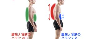 【トレーナー監修】腹筋と背筋はバランス良く鍛えることが大事!