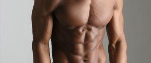 ミオスタチン|筋肉の成長を妨げるそのメカニズムと対策