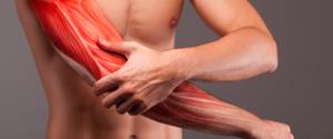 体質によって筋肉の付き方は変わるのか?