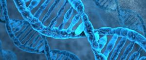 スポーツ遺伝子とは何か?筋肉の付き方や得意分野がわかる!
