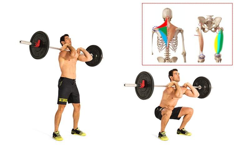 フロントスクワットで鍛えられる筋肉