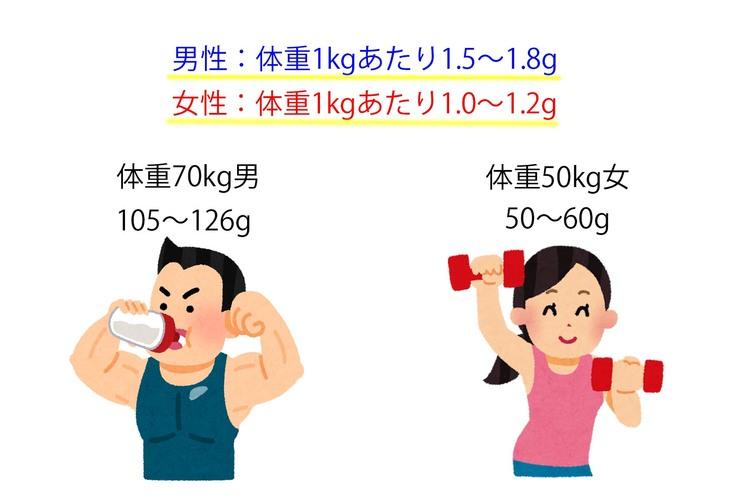 男女別1日に必要なタンパク質摂取量