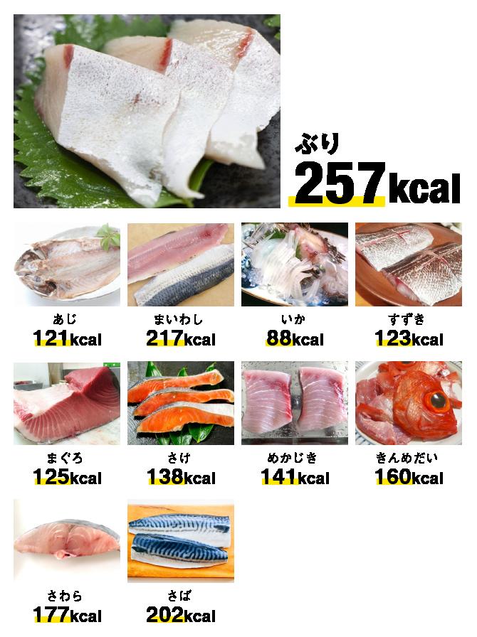 魚のカロリー比較